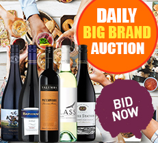 Daily Big Brand Auction