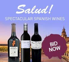 Salud! Spectacular Spanish Wines