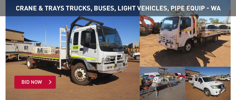 Crane & Trays Trucks, Buses, Light Vehicles, Pipe Equip - WA