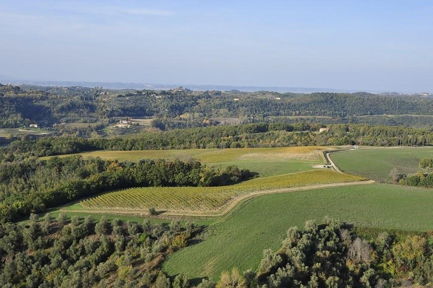 Borgo Saletta Vino Rosso Toscano IGT Vertical Pack (6 x 750mL) 11