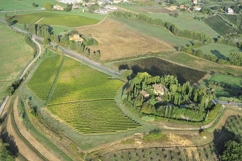 Borgo Saletta Vino Rosso Toscano IGT Vertical Pack (6 x 750mL) 9