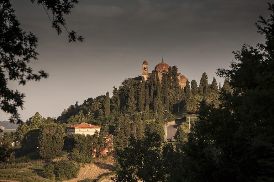 Borgo Saletta Vino Rosso Toscano IGT Vertical Pack (6 x 750mL) 7