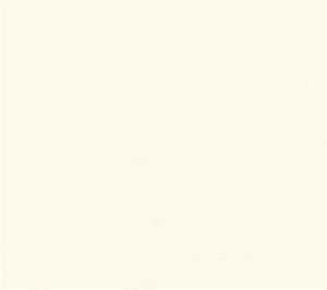 Gloss Porcelain Floor/Wall Tile-Off White Colour Auction ...