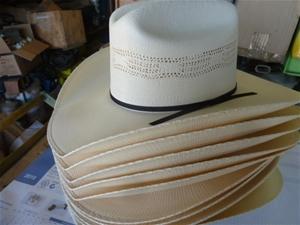 Qty 10x blue dog country style hats (Pooraka eeafcad34fd