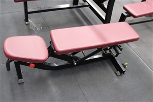 Hammer Strength Multi Adjustable Incline Bench Auction 0033