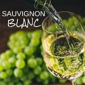 Sassy Sauvignon Blanc