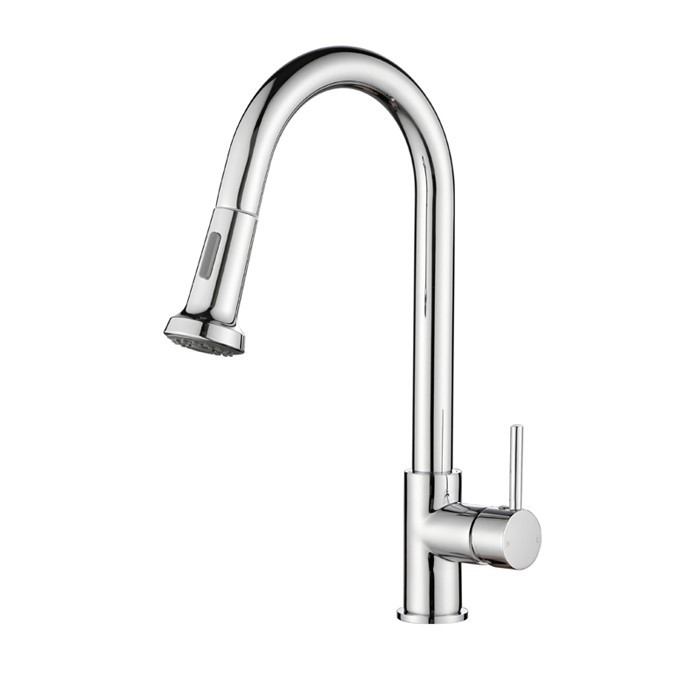 Chrome Pull Out Kitchen Mixer Sink Tap Shower Spray Watermark and WELS