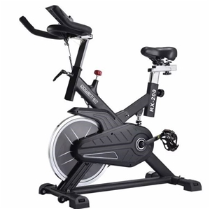 Powertrain RX-200 Exercise Spin Bike Car
