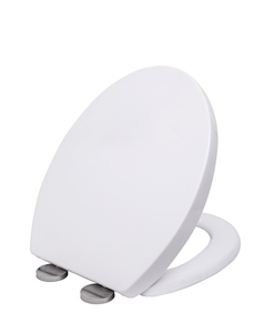 Quick Release Soft Close Toilet Seat Whi