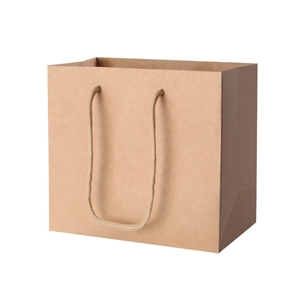 100pcs Kraft Paper Carry Bags Gift Handb