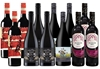Great Aussie Shiraz Pack (12 x 750mL)