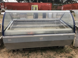 PROJECT curved front ice cream display f