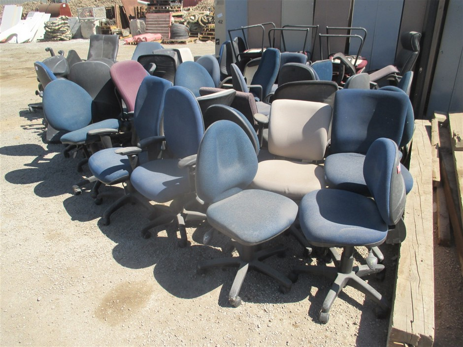 Large Quantity of Office Chairs
