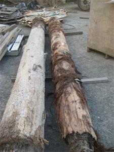 2 x Timber Logs