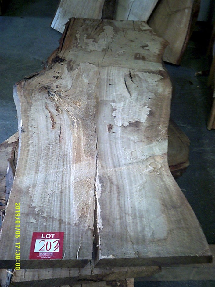 Grey Gum Timber Slab. 1950mm x 890mm x 50mm