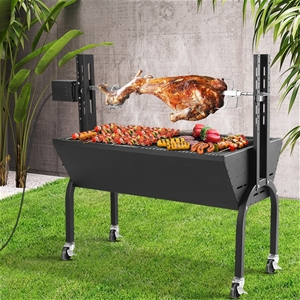 Grillz Electric Rotisserie BBQ Charcoal