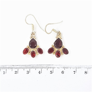 Sterling Silver & Garnet Earrings.
