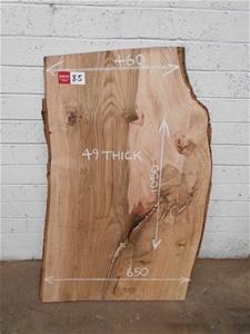 Small Timber Slab - Pin Oak