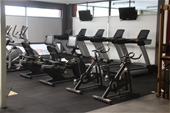 Unreserved Gym Equipment Sale