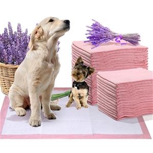 PaWz 200 Pcs 60x60 cm Pet Puppy Toilet T