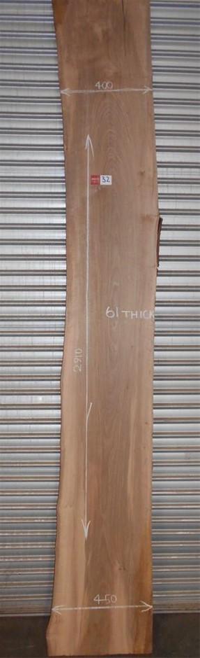 Large Timber Slab - Australian Coachwood