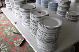 Approx 100x Hard Plastic Plates (BID PRI