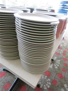 Approx. 30 Dinner Plates