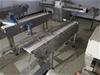 Small Conveyor Section