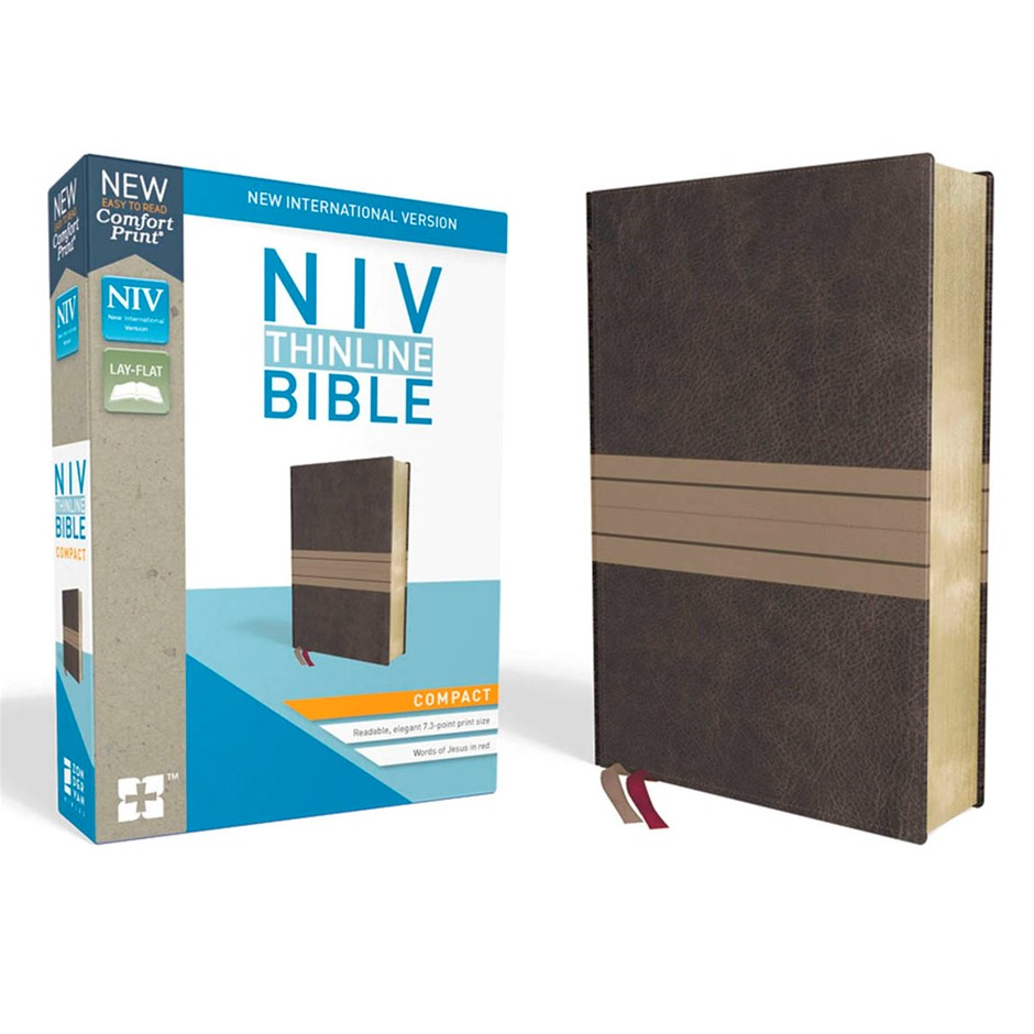 NIV Thinline - Bible - Giant Print. Buyers Note - Discount Freight Rates Ap
