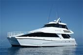 Reef, Dive/Charter Vessels
