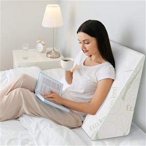 STARRY EUCALYPT Wedge Pillow Memory Foam